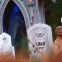 Grave's eye view