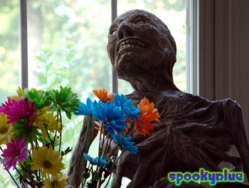 Grue the zombie enjoys daisies