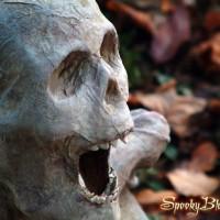 Silent shriek