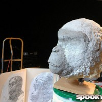 Sculpting an ape's head in paper clay